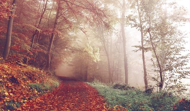 jesenné počasie.jpg