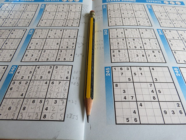 časopis Sudoku.jpg