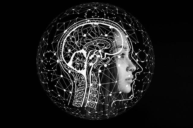 prepojenia v mozgu.jpg