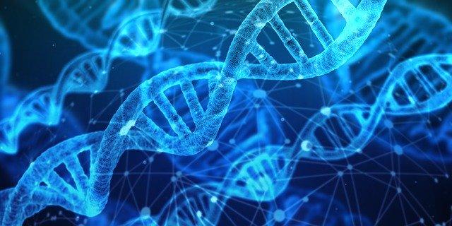 špirály DNA.jpg