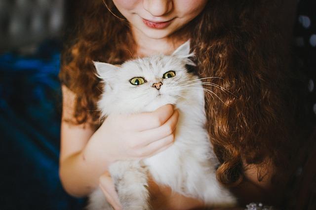 mačka a dievča.jpg